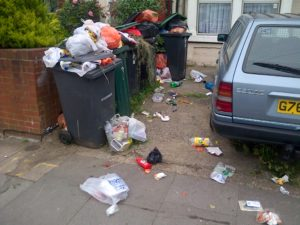 """""""bins are contaminated and will not be collected"""""""