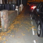 A slippery slope - leaves spreading on the pavements
