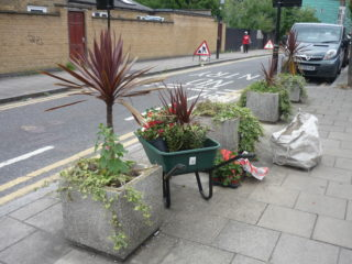 Planters in Mayes Road